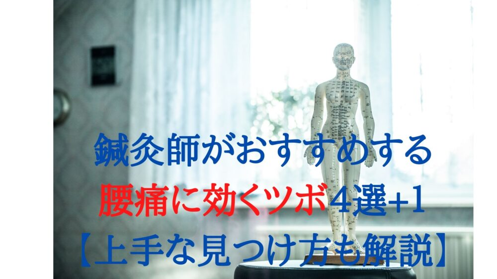 鍼灸師がおすすめする腰痛に効くツボ4選+1【上手な見つけ方も解説】