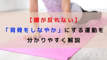 【腰が反れない】「背骨をしなやか」にする運動を分かりやすく解説
